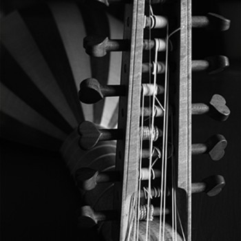Lute in black and white by Martin Haycock